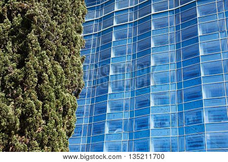 Abstract Background Of Modern Architecture And Tree