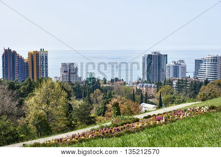 City view from the lookout Sochi Arboretum