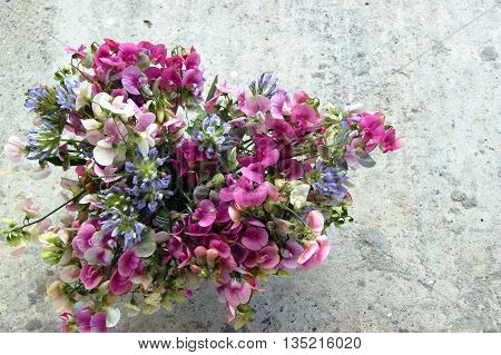 Motley summer bouquet of sweet peas and bituminaria