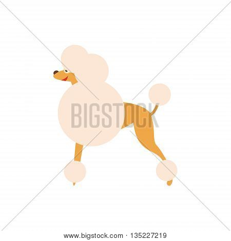Poodle Dog Breed Primitive Cartoon Illustration In Simplified Vector Design Isolated On White Background