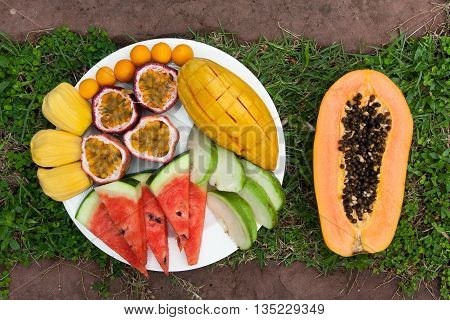 Assortment of sliced tropical fruits on on a background of green grass.
