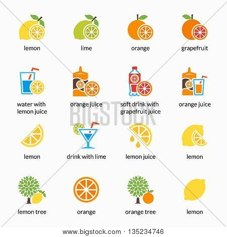 Orange, lemon, lime and grapefruit vector icons. Drink with citrus, alcohol with lemon and lemonade. Grapefruit juice, healthy juice, tropical juice beverage, sweet juice illustration