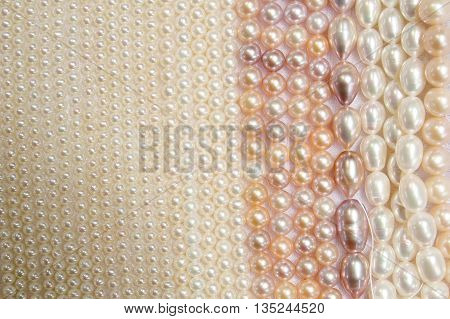 Multi-line, multi-colored pearls piled on the background.