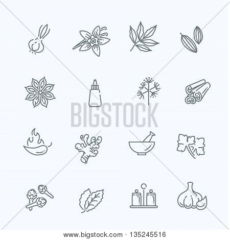 outline icon set - spices, condiments and herbs