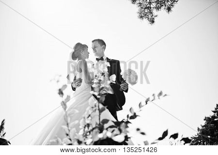 Lovely Wedding Couple At Sunny Day On Pine Wood