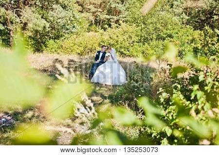 Wedding Couple At Forest Sitting On A Stump