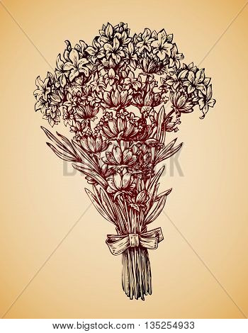 Vintage bouquet of flowers. Hand-drawn retro sketch lavender flower. Vector illustration