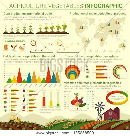 Infographic or infocharts template or layout for agriculture vegetables and its distributing over world map. Graphs and bar and circle, conus and linear, pie charts over field that has cabbage