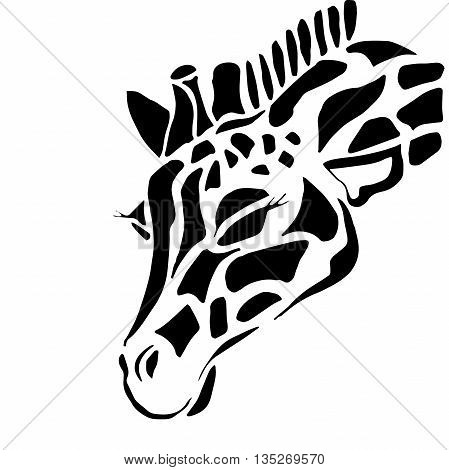 Giraffe. Silhouette. Face. Pattern. Animal. Safari.  ,