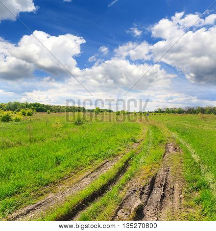 landscape with dirt road in steppe under nice clouds in sky