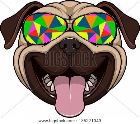 Vector illustration of funny pug smiling stylish sunglasses