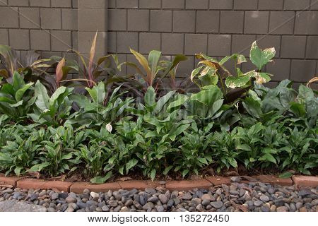 Modern Brick wall background with tree and gravel.