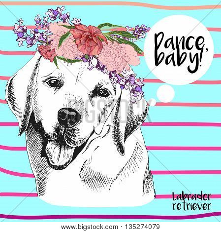 Vector close up portrait of labrador retriever in floral wreath. Hand drawn domestic pet dogl illustration. Isolated on ocean blue background with pink strips.