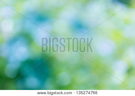 Colourful Spark And Blow Natural Bokeh  In Wonderful Fantasy Blue Green Yellow Pastel Dreamy Sweet R