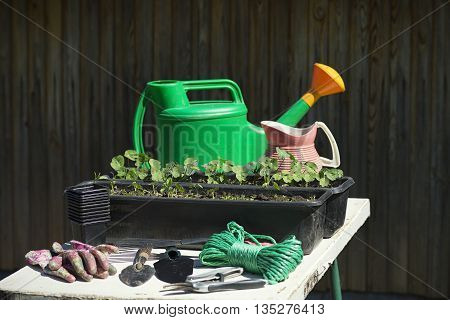 Gardening tools and equipmentGardening tools and seedling on the wooden background outdoor