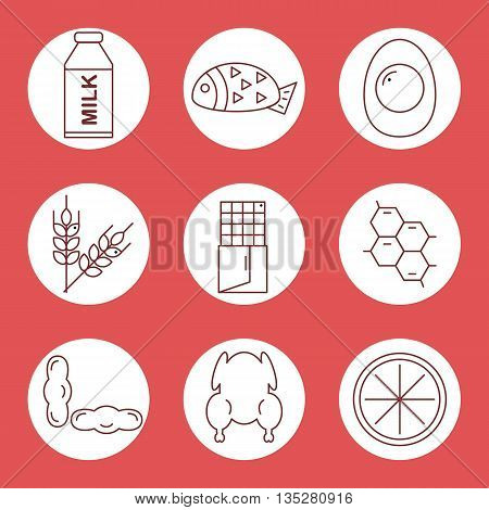 Set icons of food allergens. Icons food allergens in a circle on a red background. Vector illustration.