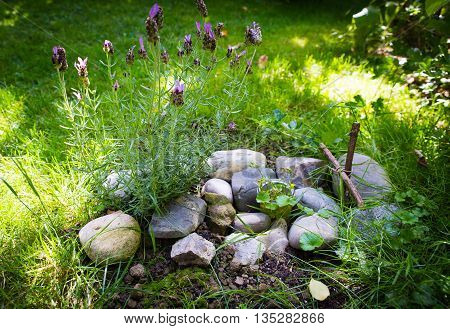 Grave of pet in garden Decorated With Stones And branch cross