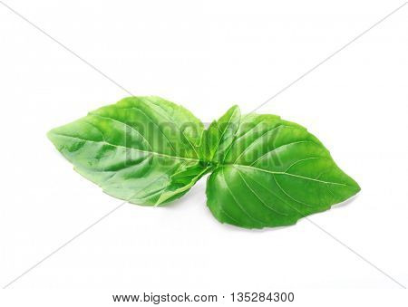 Basil leaves, isolated on white