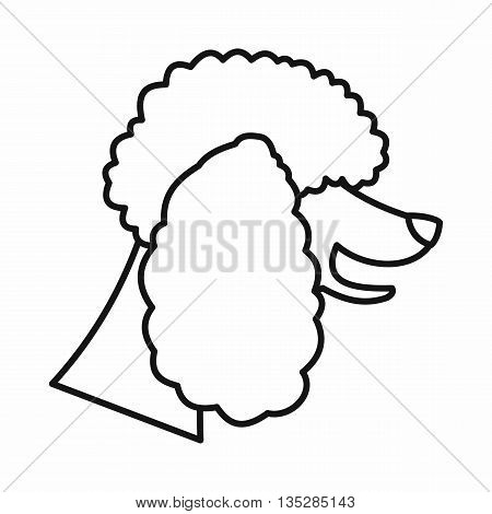 Poodle dog icon in outline style isolated on white background. Animals symbol