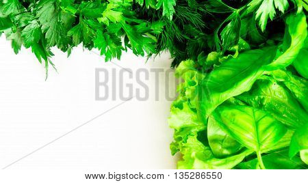 the basil, fennel, parsley, leaves of a green salad, lie on a white cloth, fresh and beautiful,