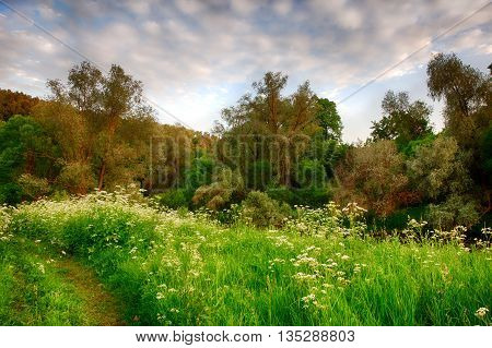 sunset in the bright spring forest with a footpath in the foreground. HDR
