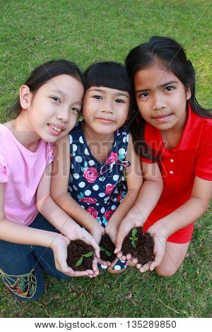 Children holding young seedling plant in hands over grass background.