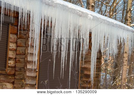 Large icicles hanging from a wooden house roof