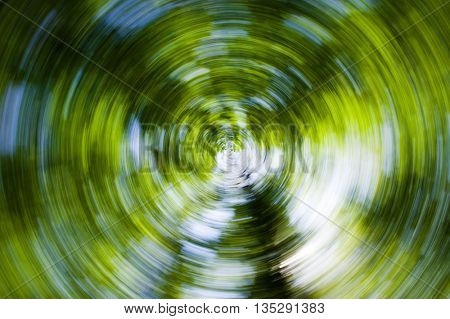 Abstract green picture of rotating camera in the forest
