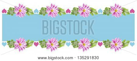 Decorative Composition of Chrysanthemum Flowers and Blue Paper.