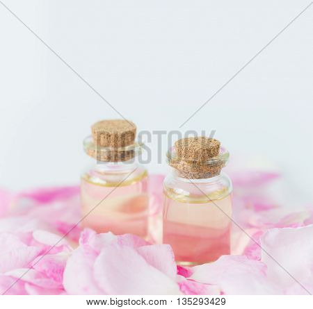 Two vials with essential oil and petals of pink roses on a white background; with space for text