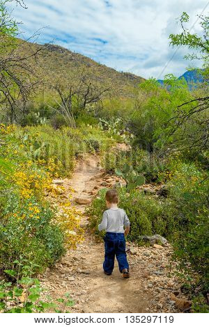 Little boy out exploring the Arizona desert on a hiking trail.