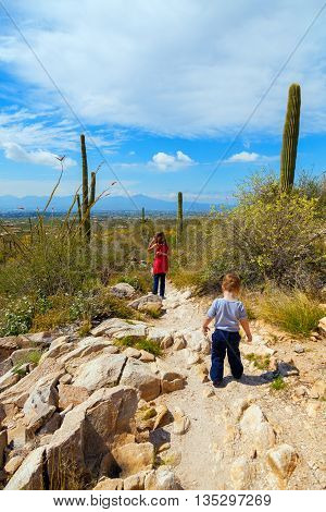 A young girl and her little brother hike down a rocky trail looking over Tucson Arizona. They look a bit lost in the blooming desert.