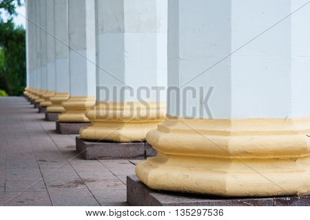 architectural columns on a old historical building facade.