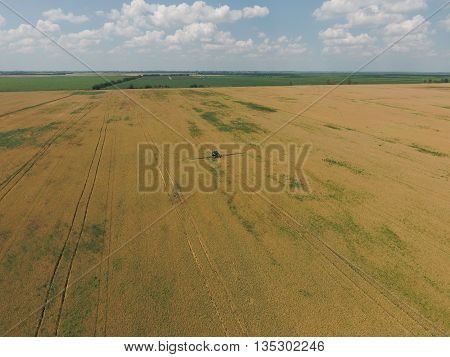 Adding Herbicide Tractor On The Field Of Ripe Wheat. View From Above.