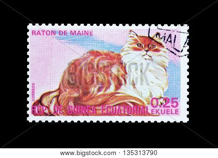 EQUATORIAL GUINEA - CIRCA  1974 : Cancelled postage stamp printed by Equatorial Guinea, that shows Maine coon cat.