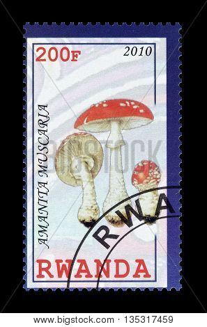 RWANDA - CIRCA 2010 : Cancelled postage stamp printed by Rwanda, that shows Amantia Muscaria mushroom.