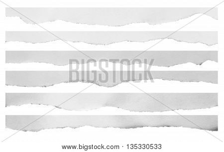 Ripped black and white paper, copy space on white background