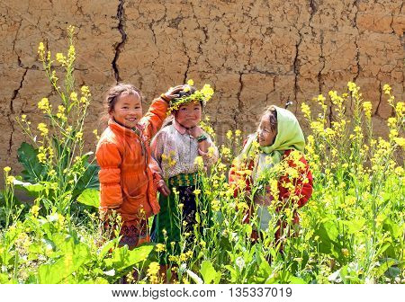 HA GIANG, VIET NAM, March 21, 2016 Hmong group of children, highland Ha Giang, play gardens, spring, lovely, with homemade crown