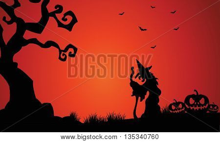 Silhouette of witch and pumpkins Halloween scary
