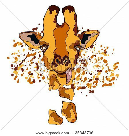 Animal. Giraffe. Close-up. Splashes and drops of paint. Isolated vector object on white background.