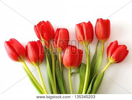 flowers tulips in a bouquet arrangement, on white
