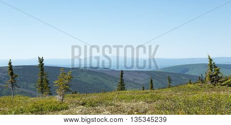 View of the vast wilderness of interior Alaska