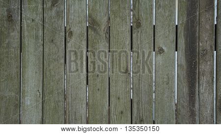 background trees  texture of the wooden fence grey-green in colour with the nails and notches and openings