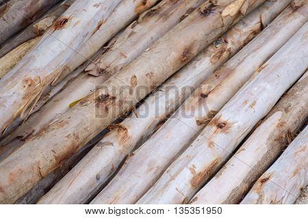close up wood pole on the floor