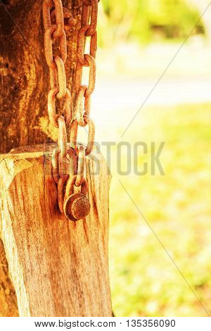 The chains are attached to the old wood in the garden.