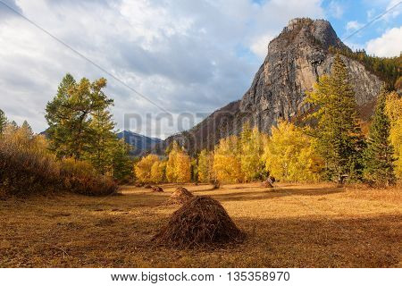 sunny landscape in the mountains in early autumn