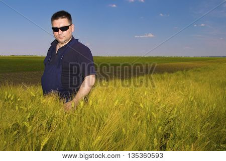 Farmer Inspecting mature grain on the field