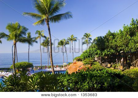 Resort Hotel In The Tropics With Palm Trees