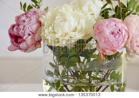Withered flowers in a vase. Pink and white color. Horizontal