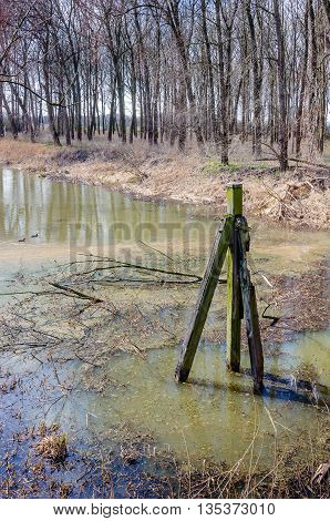 Old mooring post in a largely silted creek on a sunny day at the begining of the spring season.